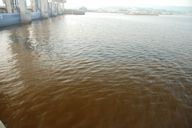 諫早湾に広がる赤潮 (2009年8月撮影)